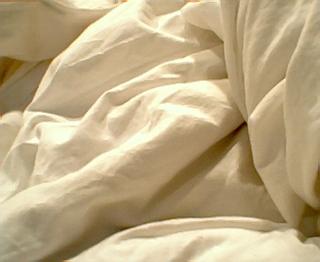 L 39 insomnie c 39 est fini - Se debarrasser punaise de lit ...
