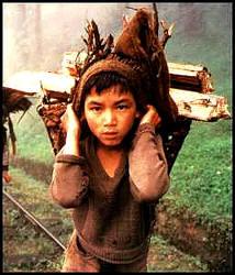 enfant travail des enfants
