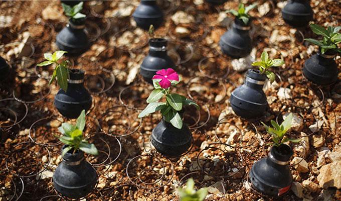 société-jardin