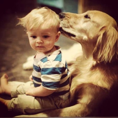 enfant-animal-chien