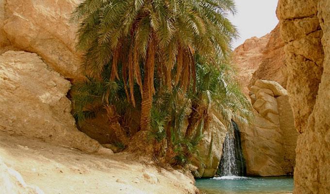 tamatrza-tunisie