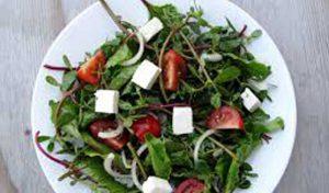 salade-bindliqua-baya