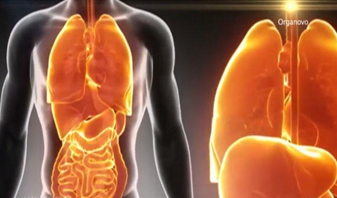 santé-corps-humain