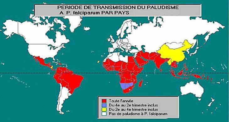 L'OMS veut éradiquer une fois pour toutes le paludisme   Part 2
