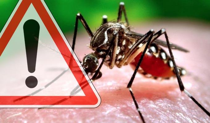 zika-virus-2016