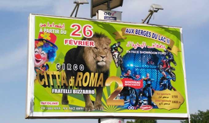 cirque-citta-di-roma