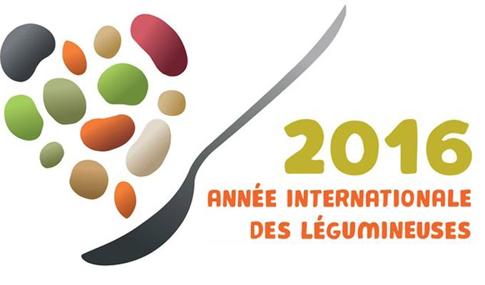 2016-annee-legumineuse-nations-unis