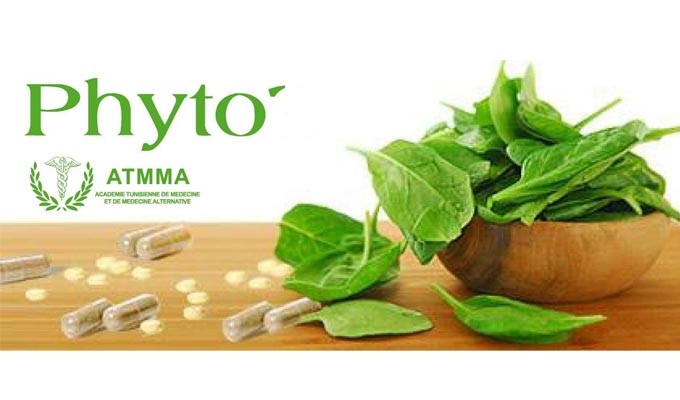 atmma-formation-phytotherapie