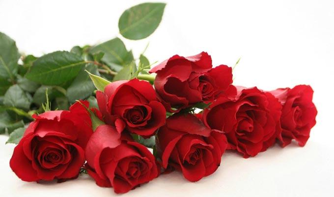 les bureaux de la poste tunisienne ouverts le 14 f vrier pour les fleurs de la saint valentin. Black Bedroom Furniture Sets. Home Design Ideas